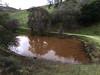 Lower Twin Pond 122414